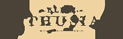 logo_Elite_Enthusiast