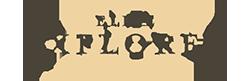 logo_Elite_Explorer