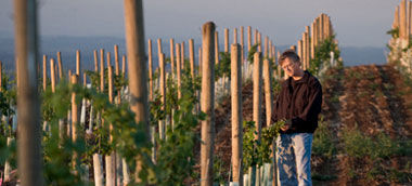 winemaker_small
