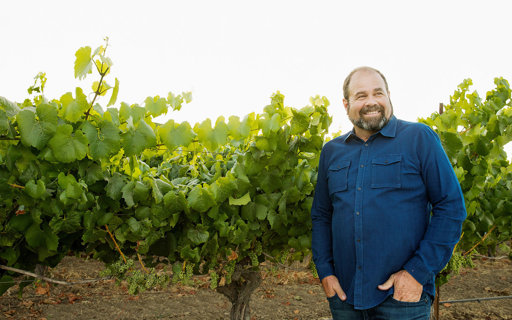 James Hall in a Vineyard