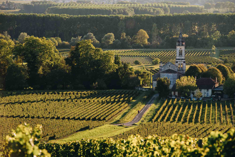 An Exclusive Journey to Bordeaux image