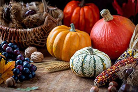 CRUSH Harvest Festival image