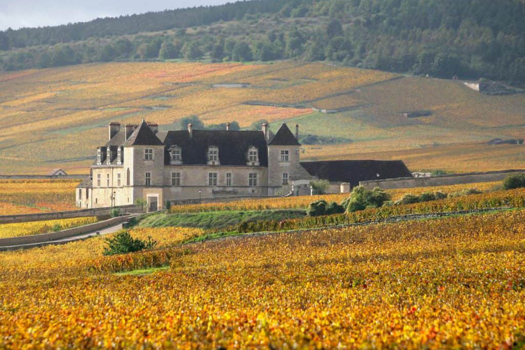 An Exclusive Journey to Burgundy image