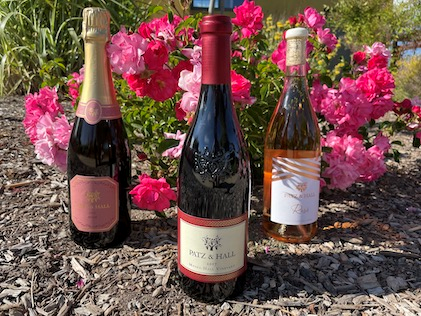 Summer Series #2 – Red, Rosé and Sparkling image
